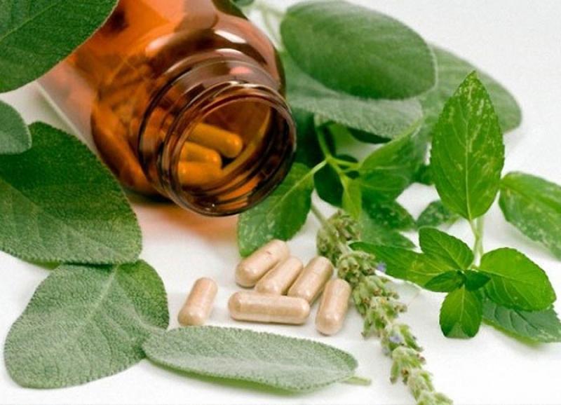 نمایشگاه گیاهان دارویی میاندوآب 98