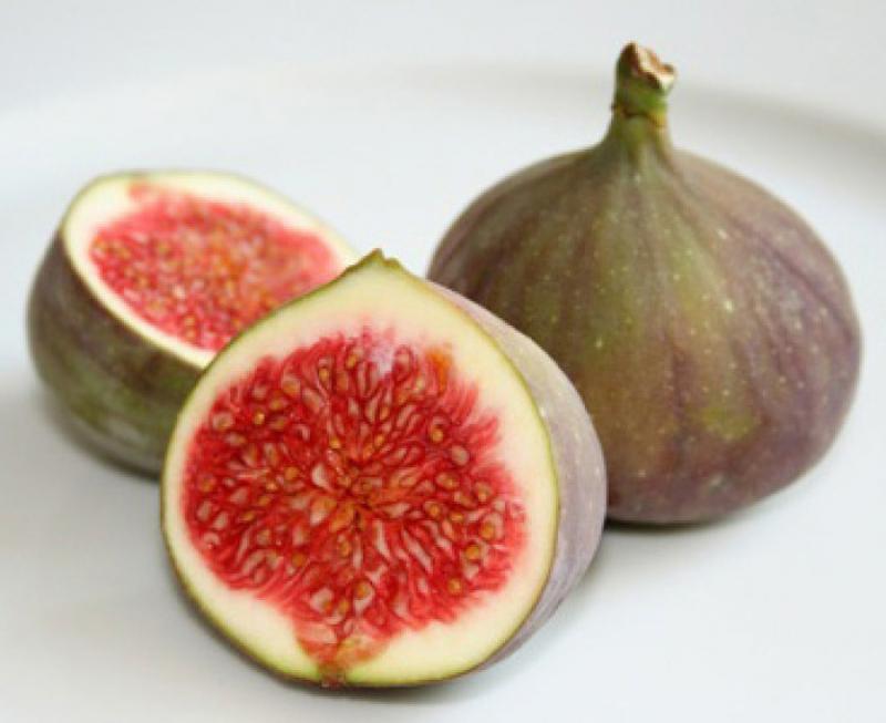 نمایشگاه میوه های بهشتی اراک 98