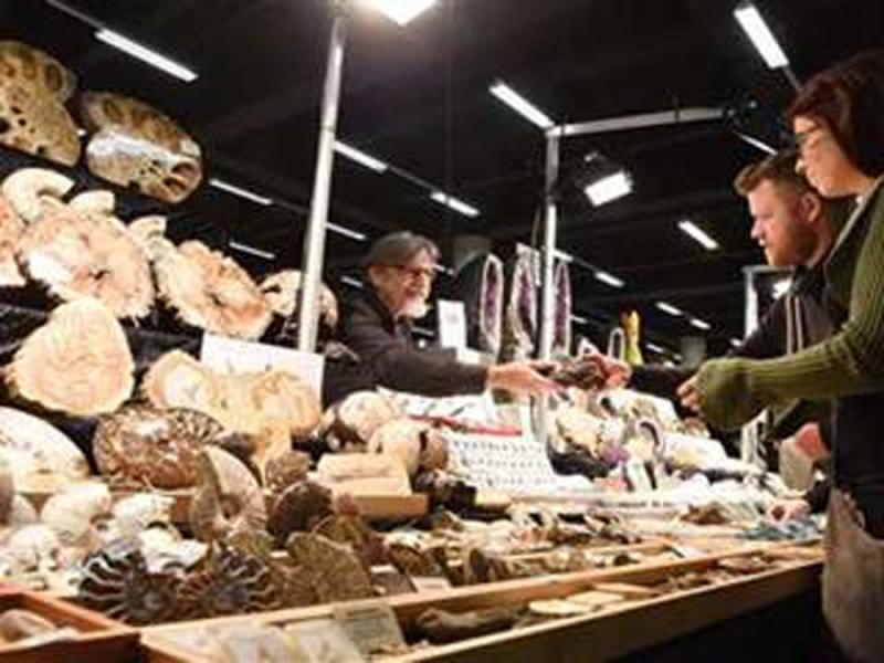 نمایشگاه سنگ های معدنی و قیمتی Mineralien هامبورگ آلمان 2019