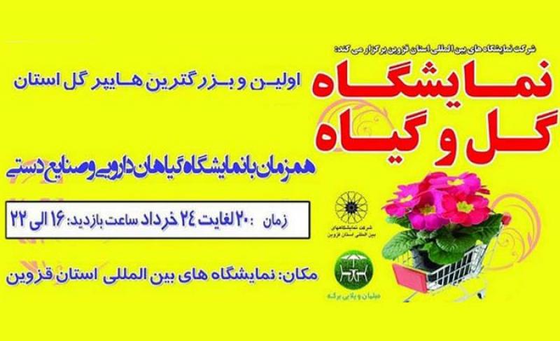 نمایشگاه گل و گیاه و گیاهان دارویی قزوین 98