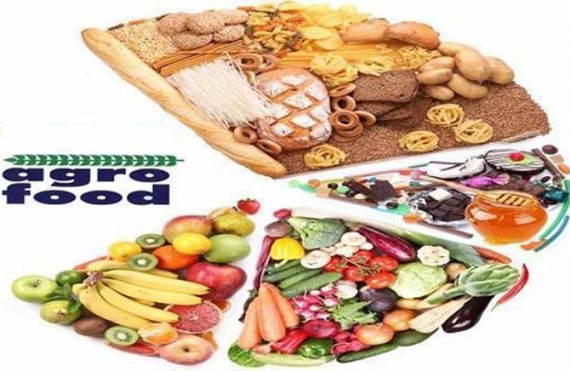 نمایشگاه صنایع غذایی و آگروفود بیرجند 98