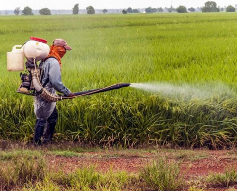نمایشگاه کشاورزی، نهاده ها و سیستم آبیاری بیرجند 98